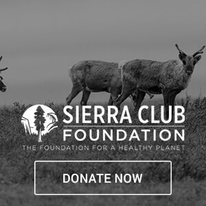 sierra club foundation